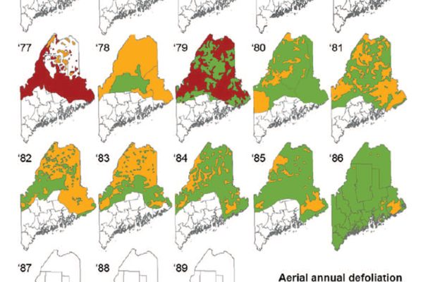 Compilation of SBW defoliation maps from the Maine Forest Service from 1972 to 1989.
