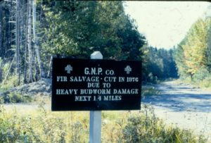 Photo of GNP sign about salvage cut in 1976