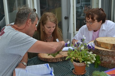 Photo of teachers investigating what tree rings tell us about history.