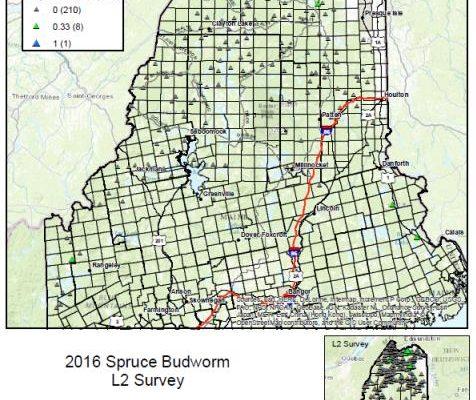 Map of 2016 L2 survey