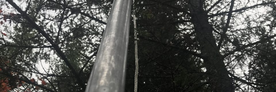 Picture of a pruning pole being used to collect branches for L2 analysis.