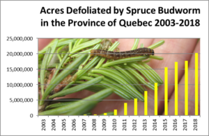 Graph of acres defoliated by SBW in Province of Quebec, 2003-2018