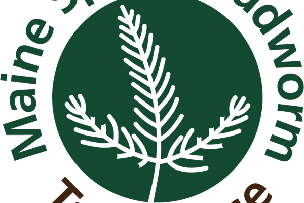 Maine Spruce budworm task force logo