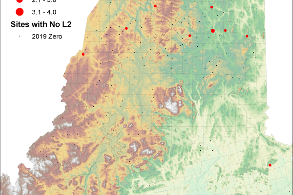 map depicting preliminary 2019 spruce budworm L2 survey results